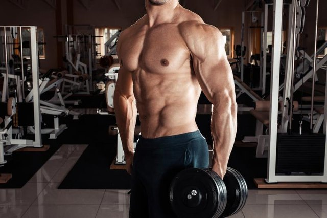 Muscle increase definition