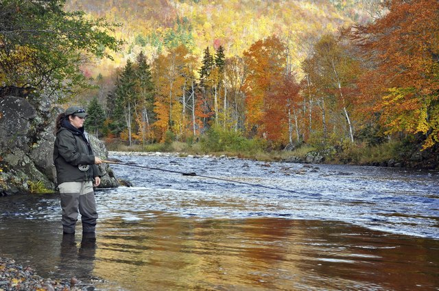 Woman Fly Fishing for Atlantic Salmon on the Margaree River