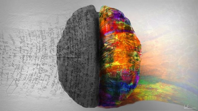 Top down view of human brain depicting left side right side differences. The right side shows creative, music and art while the left side shows calculation, numbers and mathematics.