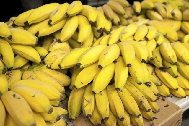 Big pile of lady finger bananas
