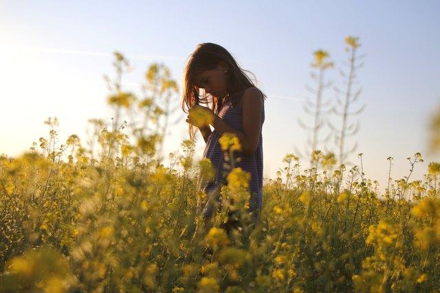 Little girl in a blooming field