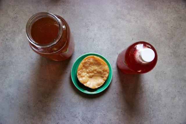 What Is Organic Raw Kombucha?