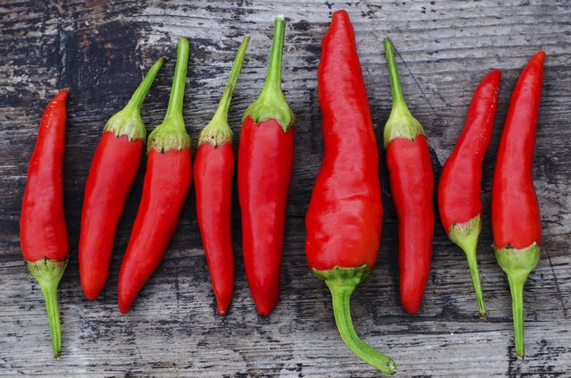 Red chili peppers on an old wooden background