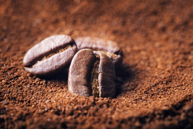 Close up of three beans on ground coffee background