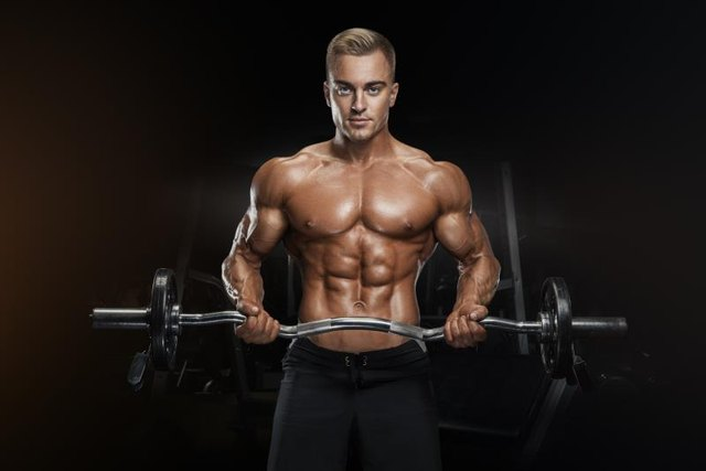 Portrait of handsome bodybuilder performing the biceps curl with EZ curl bar at gym. Perfect physique athletic young man with six pack, perfect abs, shoulders, biceps, lats and chest.