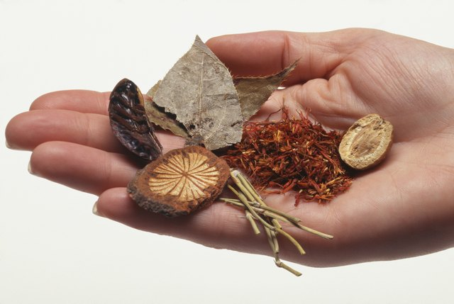 Woman holding herbal remedy ingredients, close up of hand