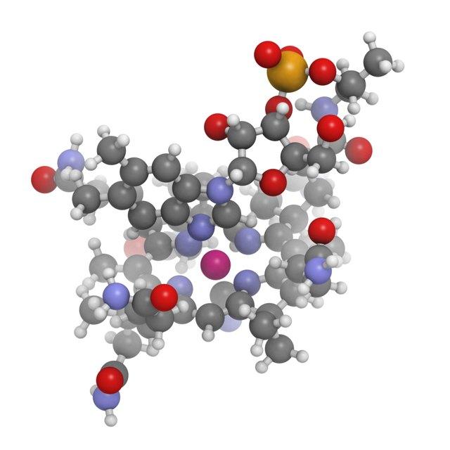 Nausea and Low Vitamin D & Vitamin B-12