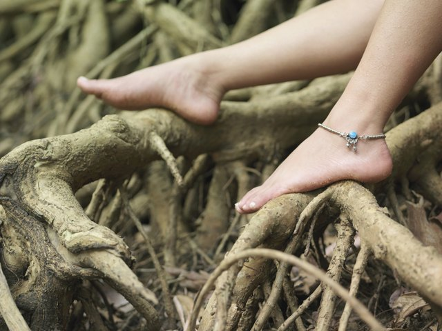 Woman's Bare Feet On Roots