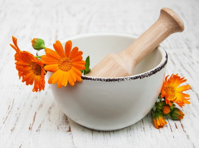 Homeopathic Treatments for Itching
