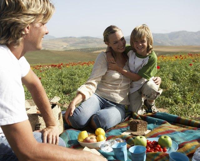 Family having picnic, boy (8-10) embracing mother, smiling, portrait