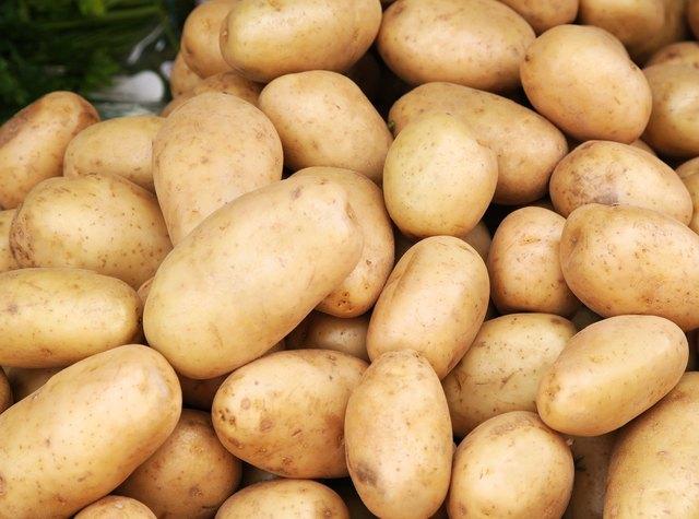 Young potatoes pile