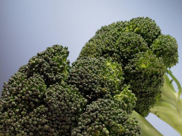 Close-up of broccoli