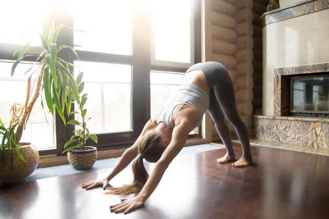 Young woman practicing yoga, standing in Downward facing dog exercise, adho mukha svanasana pose, working out, wearing sportswear, grey pants, bra, indoor full length, home interior background