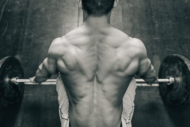 Muscular weightlifting champion, rear view, black and white