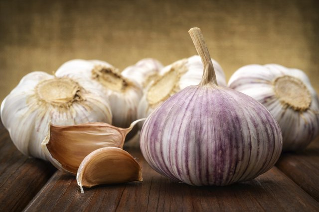 garlic and a whole wooden table closeup