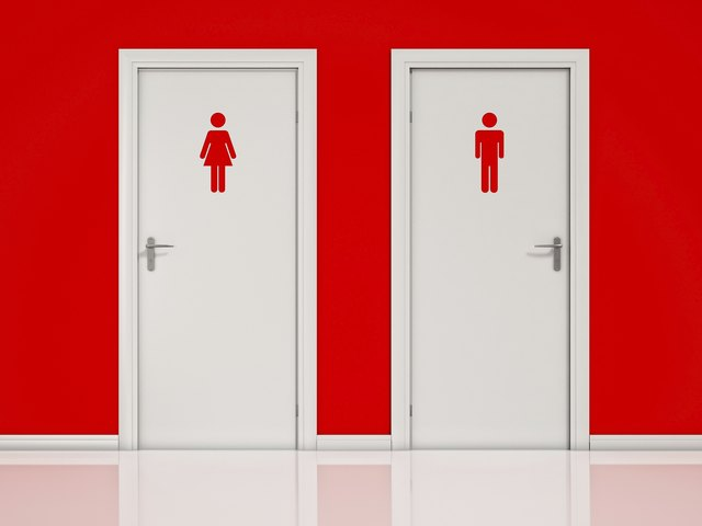 Female and Male, Toilet Doors