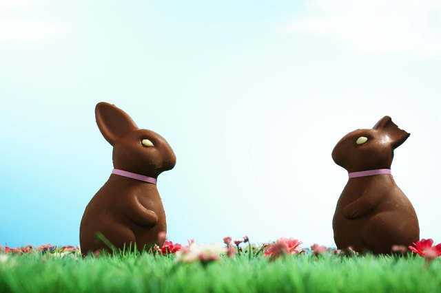 Two chocolate Easter bunnies one with half of ear bitten off