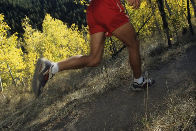 Jogger running on trail through forest, low section