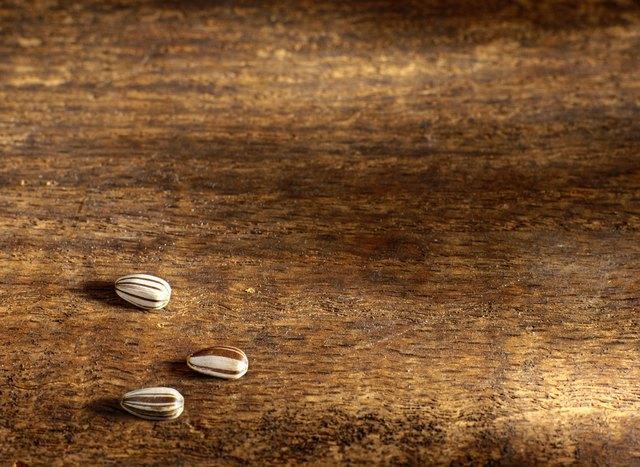 Three Sunflower Seeds