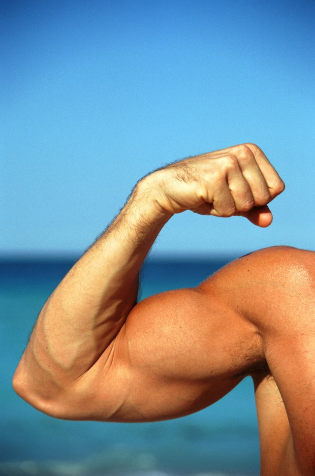 How to Get Bigger Biceps in One Week