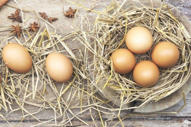 Farm fresh egg
