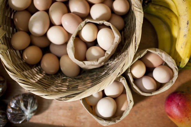 Baskets and bags of eggs overhead.