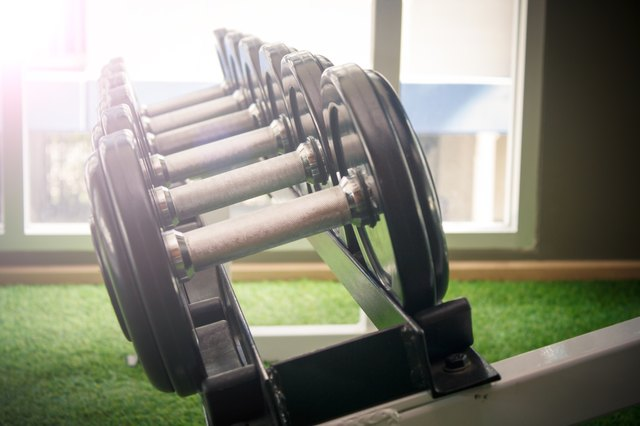 dumbbell in gym