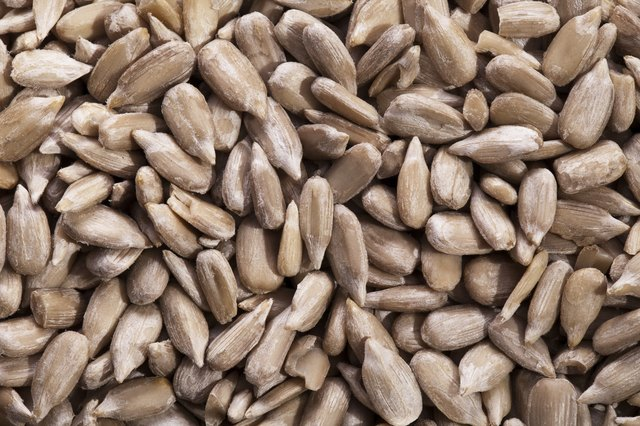 heap of sunflower seed close up