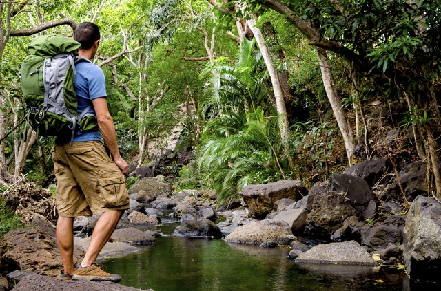 Male Hiker Next To River in Jungle