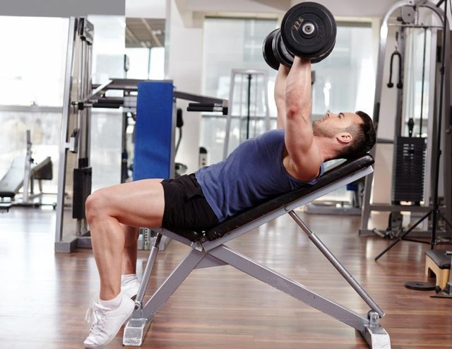 Athletic man working out his chest with dumbbells on a bench press