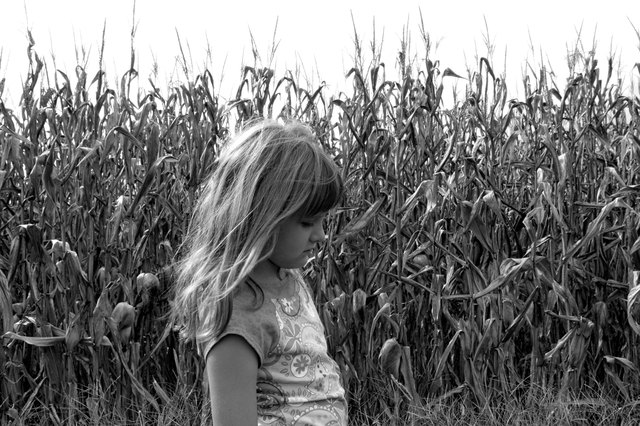 Child in cornfield near Jackson, Missippi.