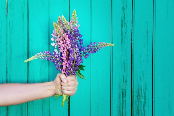 Hand holding flowers against bright wall