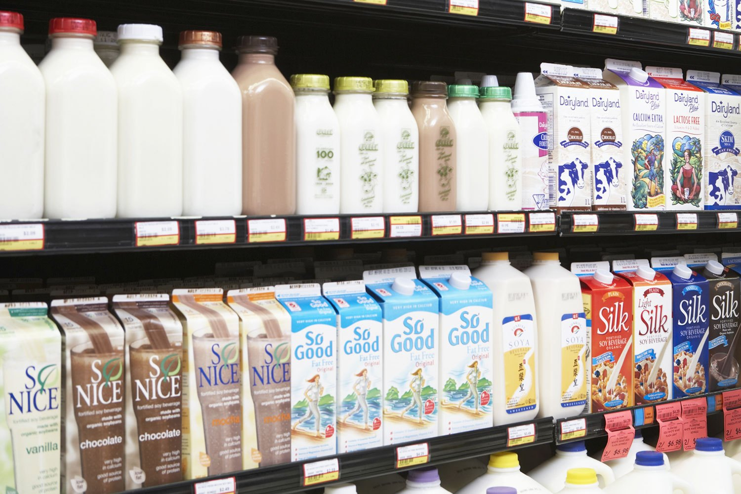 9 Different Types of Milk and How to Choose the Healthiest One
